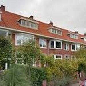 Credion Haarlem image 2
