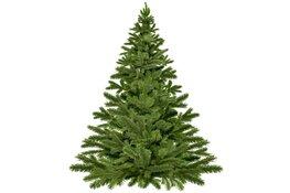 Winactie bij kerstbomeninzameling in Velsen!