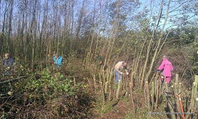 Natuurmonumenten zoekt vrijwilligers voor bos en duin