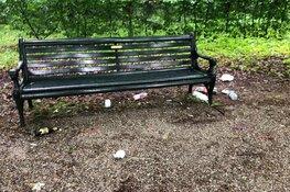 Beeckestijn getroffen door vandalisme