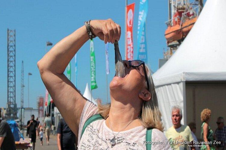 29 en 30 juni Havenfestival IJmuiden