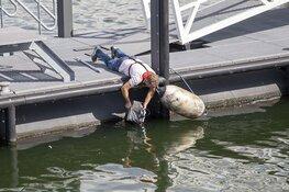 Handrem vergeten op de Trawlerkade en het water in