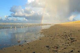 Zaterdag 9 november strandexcursie Zuidpier IJmuiden