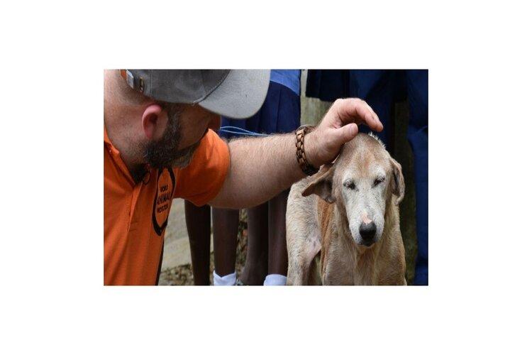Help je pensioen diervriendelijk te worden