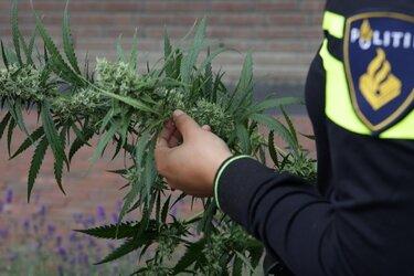 Drugspand Velsen-Noord voor 6 maanden gesloten